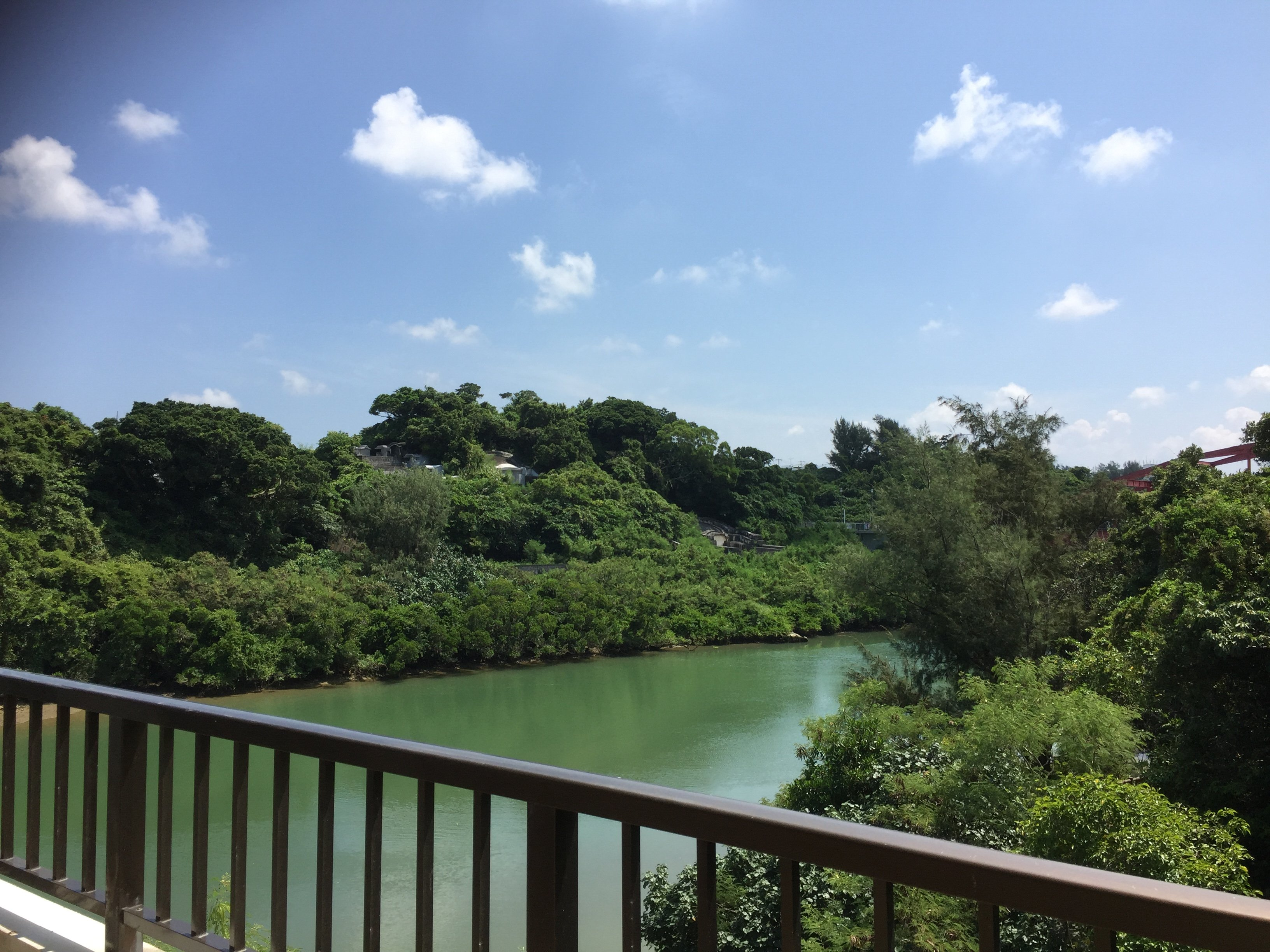 GREENCOTE 15D - My Housing Okinawa